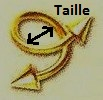 Taille spirale